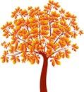Kastanjebrunt träd autumn tree vector Fotografering för Bildbyråer