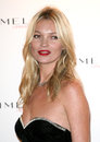 Kate Moss Imagem de Stock Royalty Free
