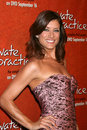 Kate Walsh Stockfoto