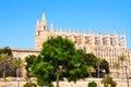Katedra Palma De Majorca Zdjęcie Royalty Free