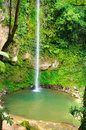 stock image of  Katibawasan Falls. Philippine paradise.