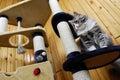 Katze, die in einem sehr großen Cat-house spielt und unten schaut Stockfoto