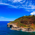 Kauai headlands bird nesting colony at kilauea lighthouse bay in hawaii islands Royalty Free Stock Images