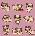 Cute kawaii cartoon pug in different poses Royalty Free Stock Photo