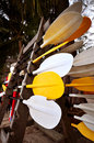 Kayak Paddle Royalty Free Stock Photo
