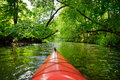 Kayak paddling on river through woods Royalty Free Stock Photography