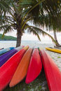 Kayaks under coconut palms Stock Images