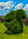 Kazan, Russia. Squirrel. Topiary figure in the Kremlin embankment of the river Kazanka. Landscape design. Green Art.
