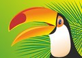 Keel billed toucan with green palm Royalty Free Stock Images