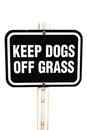 Keep dogs of grass Stock Photos