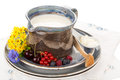 Kefir in jug argil with wooden spoon on rustic plate Royalty Free Stock Image