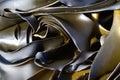 Kelp seaweed Royalty Free Stock Image