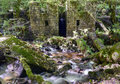 Kennal vale the old gunpowder works at in cornwall Stock Photos