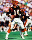 Kenny anderson cincinnati bengals former qb scanned from slide Royalty Free Stock Photography
