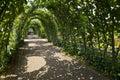 Kensington Gardens in London Royalty Free Stock Photo