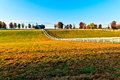 Kentucky thoroughbred horse farm this image is of a near lexington the photograph was taken just after dawn on an autumn day Royalty Free Stock Image