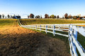 Kentucky Thoroughbred Horse Farm