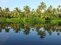 Kerala Backwaters, India Royalty Free Stock Image