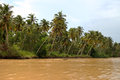 Kerala backwaters kerala india view of Royalty Free Stock Images