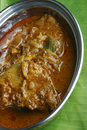 Kerala fish curry - fish in a tangy coconut curry Royalty Free Stock Images