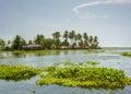 Kerala waterways and boats the open of the backwaters ashtamudi lake Stock Photos