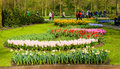The keukenhof flower garden lisse netherlands april tourists are visiting in spring is a popular which is Stock Photos