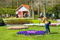 The keukenhof flower garden lisse netherlands april tourists are visiting in spring is a popular which is Royalty Free Stock Image