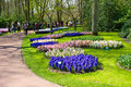 The keukenhof flower garden lisse netherlands april tourists are visiting in spring is a popular which is Stock Photo