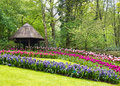 Keukenhof, Netherlands Stock Images