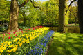 Keukenhof park Royalty Free Stock Images