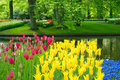 Keukenhof park pond Stock Photography