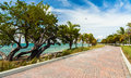 Key biscayne beach pretty along the rickenbacker causeway in in miami Royalty Free Stock Photo