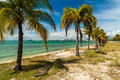 Key biscayne beach pretty along the rickenbacker causeway in in miami Stock Photography