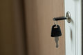 Key the cabinet door. Royalty Free Stock Photo