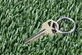 Key with keyring  laying in mown grass Stock Photos