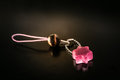 key ring with a pink stone Royalty Free Stock Photo