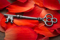 Key to your heart concept with skeleton set on red flower petals Stock Photo