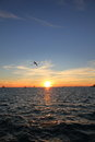 Key West Sunset - Florida - USA Royalty Free Stock Photo