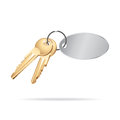 Keys gold on white background Royalty Free Stock Photography