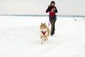 Kharkiv - Jan. 14: Sled Dog Racing. Sportsman runs with dog on
