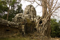 Khmer Ruin and jungle, Angkor, Cambodia Stock Images