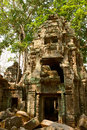 Khmer temple ta prohm ruins of the ancient Stock Images