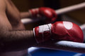 Kick boxer with a focus on the gloves Royalty Free Stock Photo