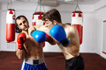 Kickbox sparring Royalty Free Stock Photo