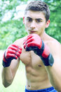 Kickboxer in red gloves engaged on the nature Stock Image