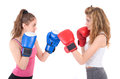 Kickboxing girls fight isolated on a white background studio shot Royalty Free Stock Photos