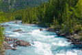 Kicking horse river Royalty Free Stock Photos