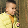 Kid behind tree Royalty Free Stock Photo