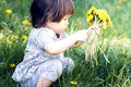 Kid with dandelions cute little girl playing a dandelion Stock Photos