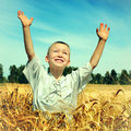 Kid in the field toned photo of happy wheat Royalty Free Stock Photos
